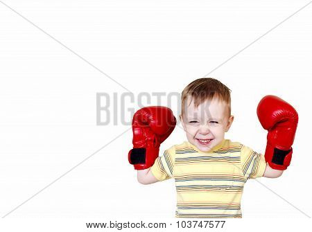 young boxer winner