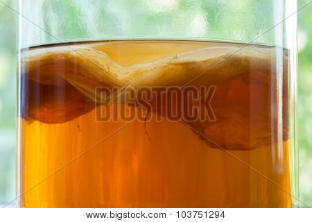 Natural kombucha fermented tea beverage healthy organic drink in vintage glass close up texture. Sup