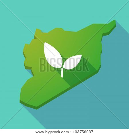 Long Shadow Syria Map With A Plant