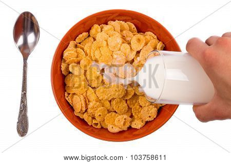 Flakes in a plate with milk