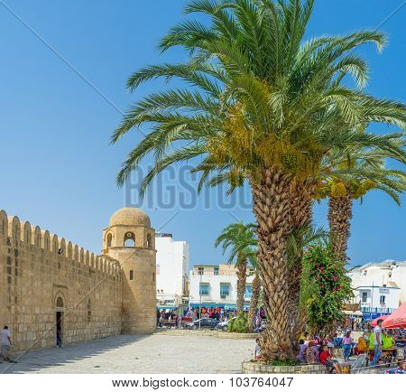 The Square With Palms