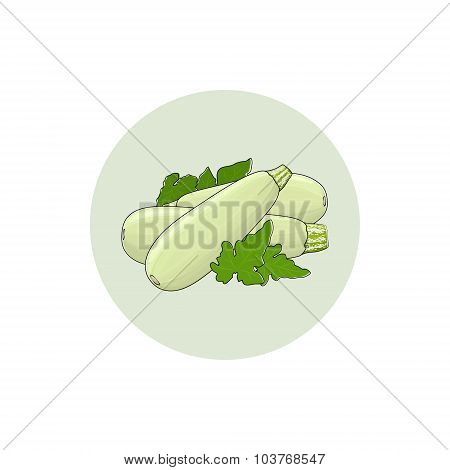 Icon Zucchini Courgette Vegetable