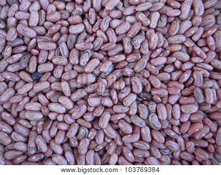 Red Bean Texture Background. The Beans Are Cultivated With Biological Agriculture In Tuscany, Italy