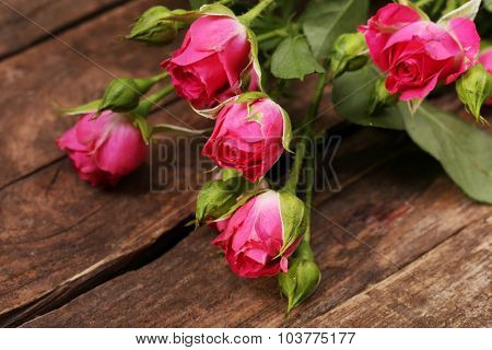 Beautiful small roses on wooden background