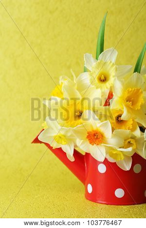 Fresh narcissus flowers on yellow wallpaper background