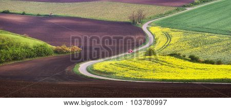 Spring plowed field with road and flowers