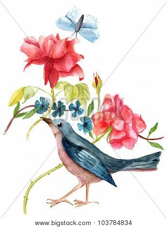 Vintage Illustration With Watercolor Bird, Roses And Butterfly