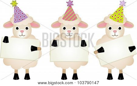 Birthday sheeps with signboards