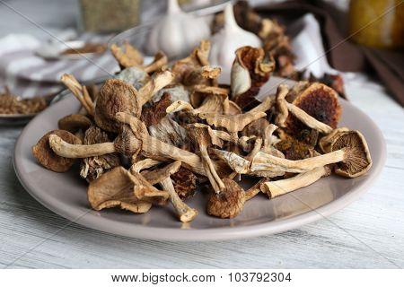 Dried mushrooms in plate