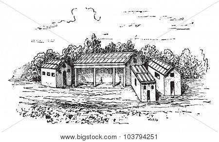 Farmyard, vintage engraved illustration.