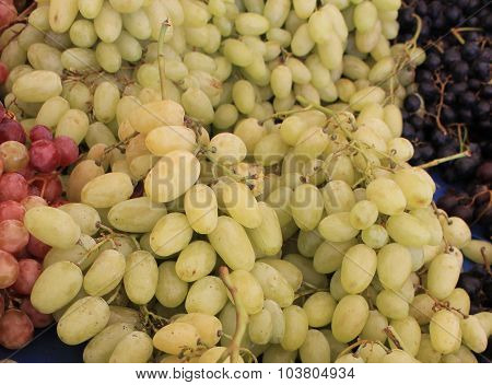 Green Grapes Turkish sultan