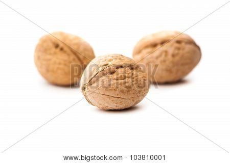 Walnuts (Juglans regia)