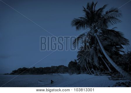 Tropical Beach Paradise Tranquil Scene Sea Concept