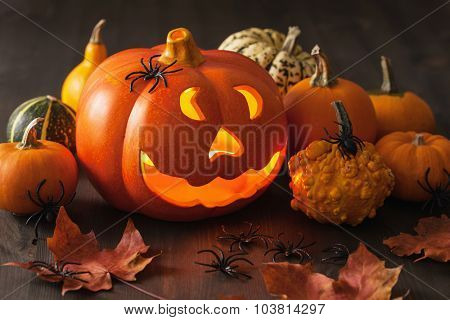 Halloween Jack O Lantern pumpkin spiders candles