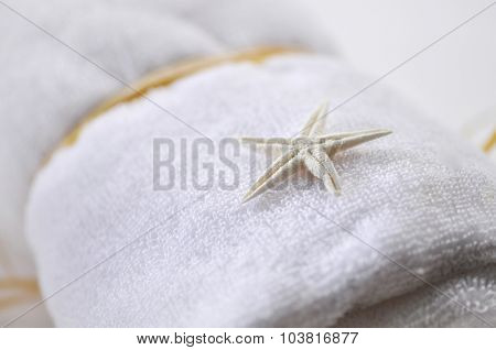 A small star fish seashell placed on rolled white towel - spa object