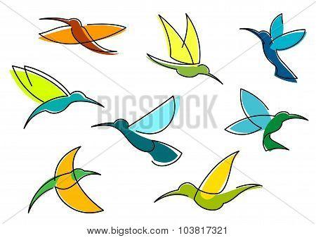 Blue, orange and green hummingbirds icons