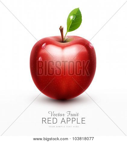 vector red apple with green leaf isolated on a white background
