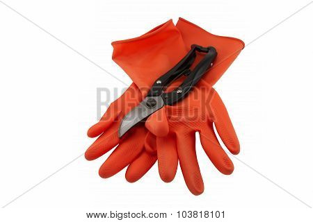 Rubber Glove And Shears