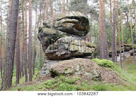 Rock Formation In The Forest