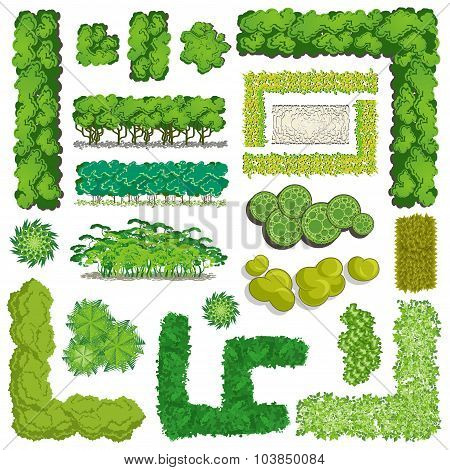 Trees And Bush Item Top View \ Top Side For Landscape Design, Vector Icon.