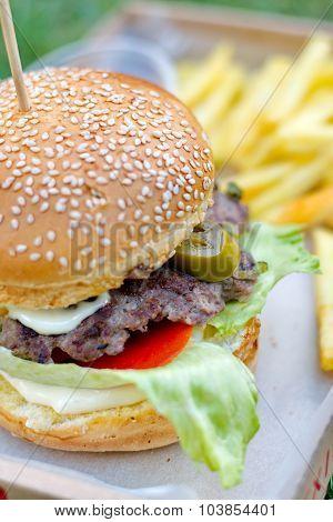 Juicy Hamburger