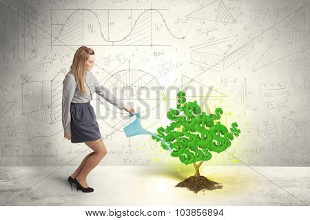 Business woman watering a growing green dollar sign tree concept