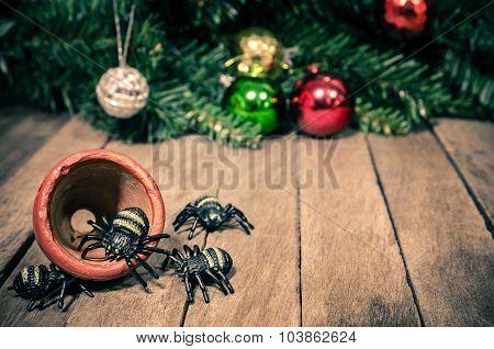 Funny Spiders in Halloween Wooden Background Texture