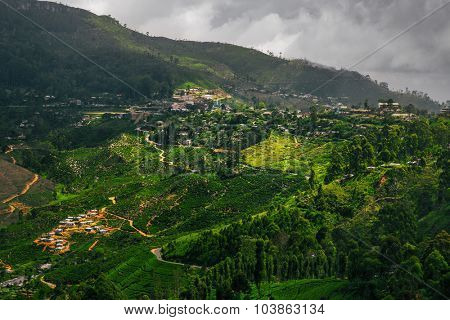 Valley with tea plantations in the highland area. The town of Haputale, Sri Lanka