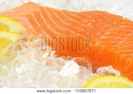 detail of raw salmon fillet on ice