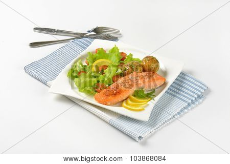 pan fried salmon fillet served with roasted potatoes and fresh vegetables on white square plate and striped place mat