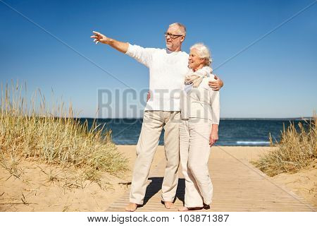 family, age, travel, tourism and people concept - happy senior couple pointing finger to something on summer beach