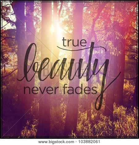 Inspirational Typographic Quote - True Beauty never fades