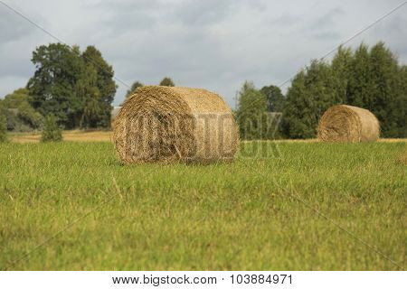 Haystacks On The Field