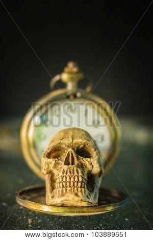 Skull On An Old Timer