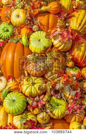 Halloween pumpkins and leaves natural background