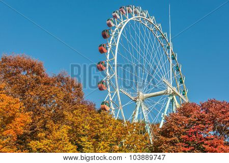 Brightly colored Ferris wheel against the blue sky and fall trees