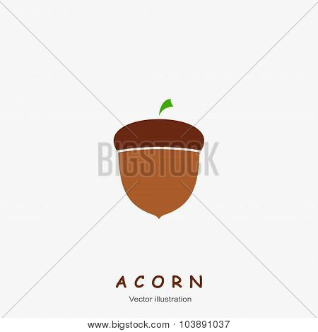 Image of autumn Acorn. Vector illustration.