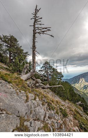 Olympus Ridge In Greece