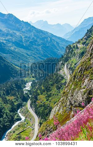Swiss Apls View With Wild Pink Flowers