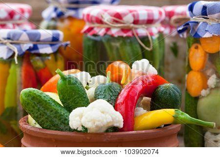 Organic vegetables in vinegar