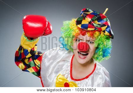 Clown with boxing gloves in funny concept