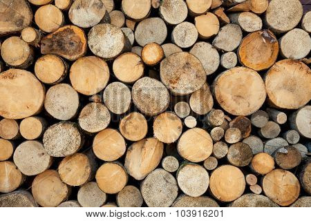 Wood log pile background, natural colors and texture