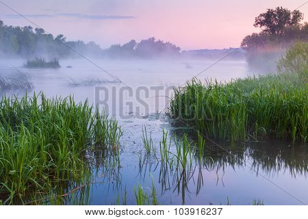 Gentle Foggy morning near the river, pink sunrise and mist