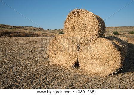Golden Hey Bales After Harvesting