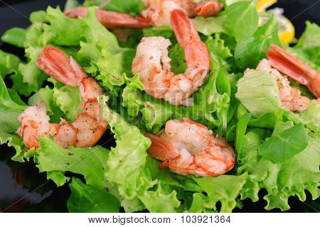 Lettuce With Shrimps