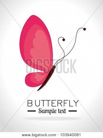 Butterfly design.