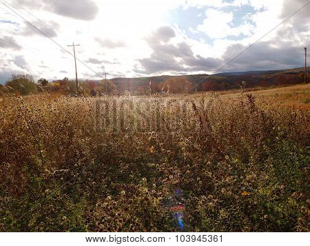 Fall Meadow And Mountains