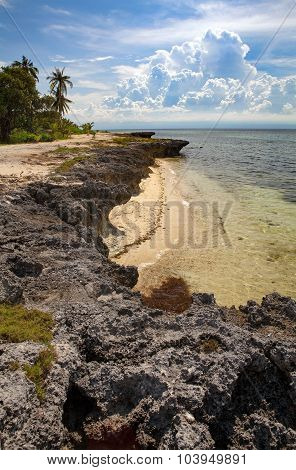 Tropical Beach Raised Coral Reef