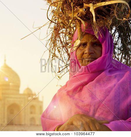Woman Taj Mahal Seven Wonder Famous Place Concept