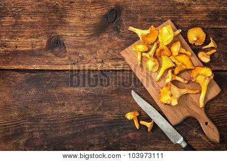 Cantharellus cibarius, chanterelle mushrooms on a cutting board with knife on a rustic background. Lots of copy space